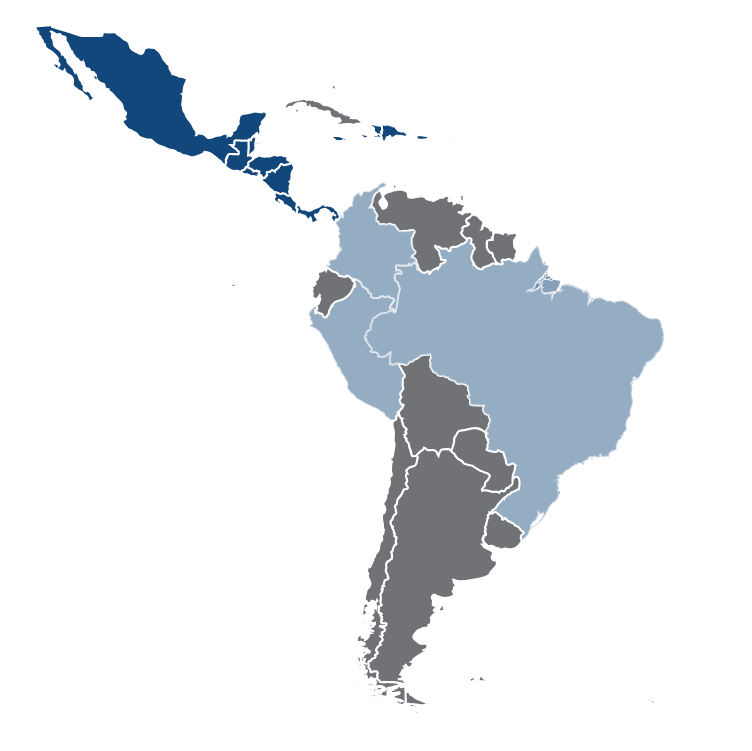 REAL - Energy markets in Latin America